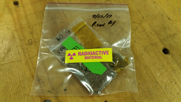 Sample seeds post irradiation